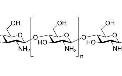 Grundlagen der Biokunststoffe