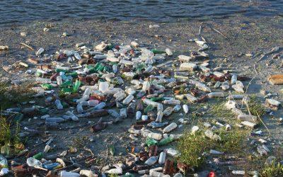 Können Bakterien Plastik abbauen?