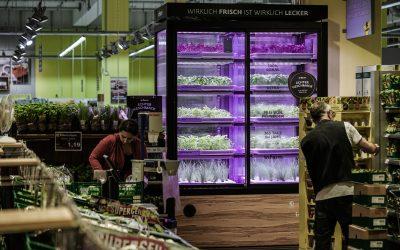 Vertical Farming und IT für die Lebensmittelproduktion