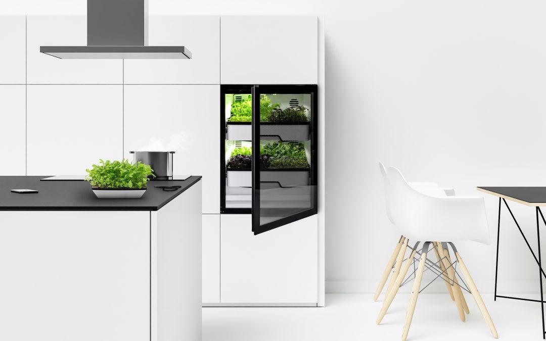 Indoor Farming in der eigenen Küche