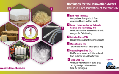 Cellulose Fibre Innovation of the Year 2021