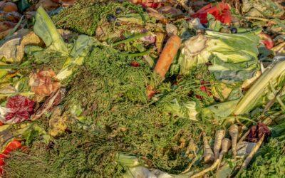 5 Tipps gegen Lebensmittelverschwendung